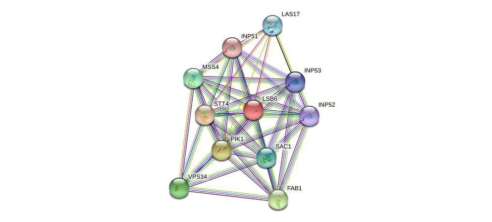 LSB6 protein (Saccharomyces cerevisiae) - STRING interaction network