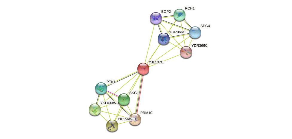 YJL107C protein (Saccharomyces cerevisiae) - STRING interaction network