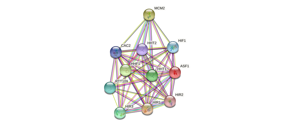 ASF1 protein (Saccharomyces cerevisiae) - STRING interaction network
