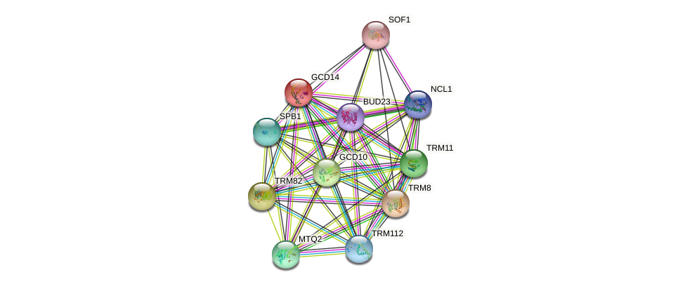 GCD14 protein (Saccharomyces cerevisiae) - STRING interaction network