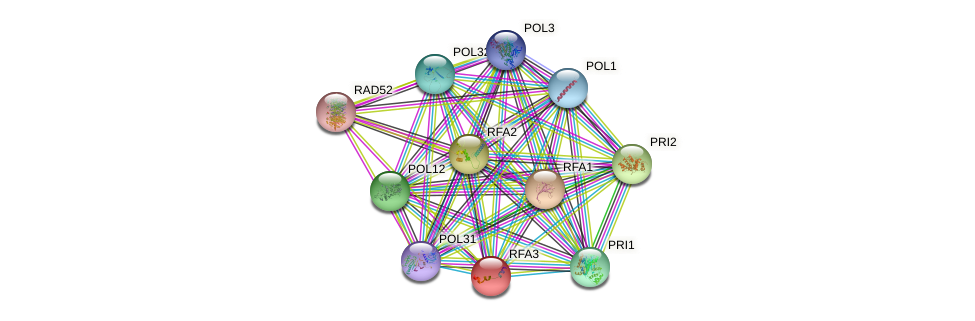 RFA3 protein (Saccharomyces cerevisiae) - STRING interaction network