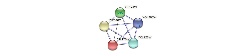 YIL175W protein (Saccharomyces cerevisiae) - STRING interaction network