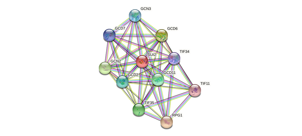 SUI2 protein (Saccharomyces cerevisiae) - STRING interaction network