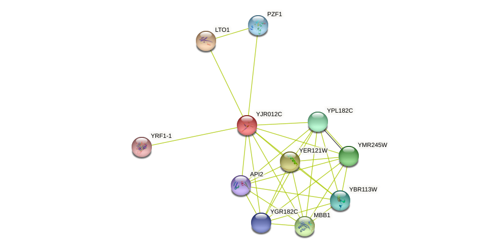 YJR012C protein (Saccharomyces cerevisiae) - STRING interaction network