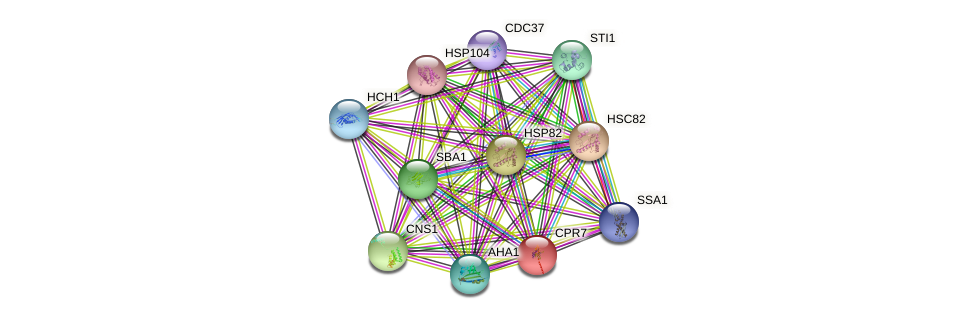 CPR7 protein (Saccharomyces cerevisiae) - STRING interaction network