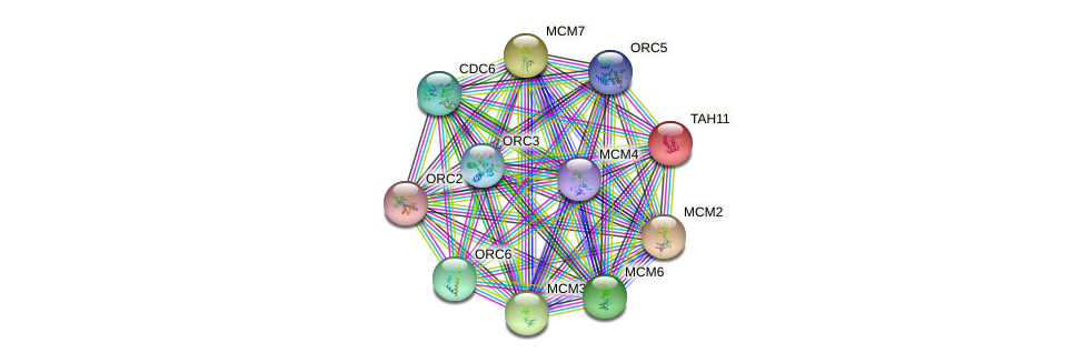 TAH11 protein (Saccharomyces cerevisiae) - STRING interaction network