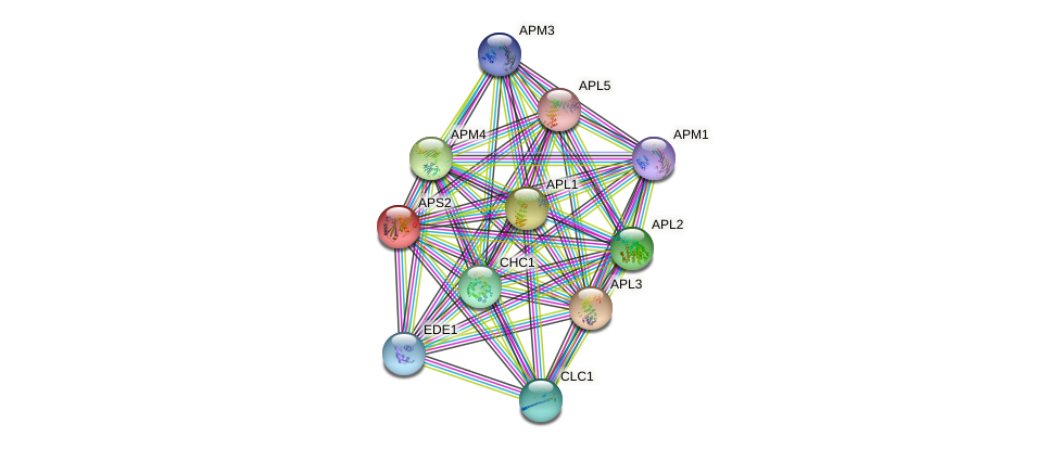 APS2 protein (Saccharomyces cerevisiae) - STRING interaction network