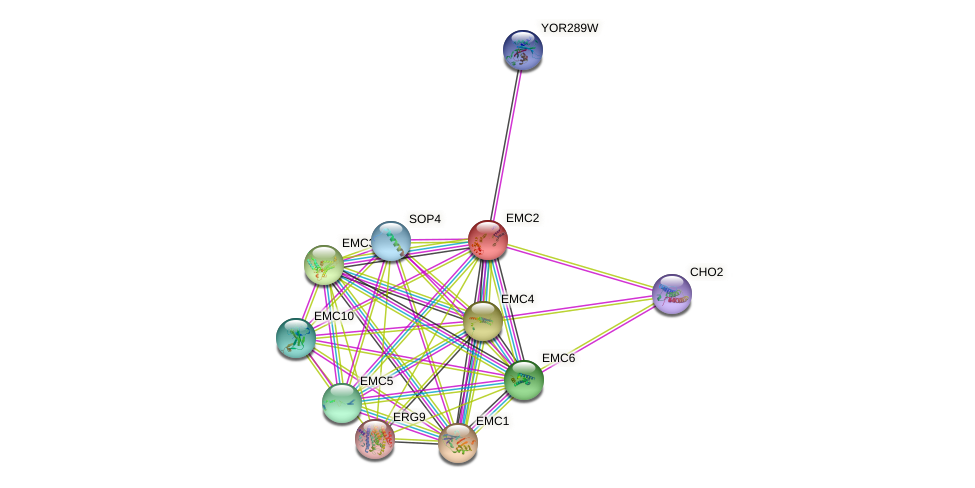 EMC2 protein (Saccharomyces cerevisiae) - STRING interaction network