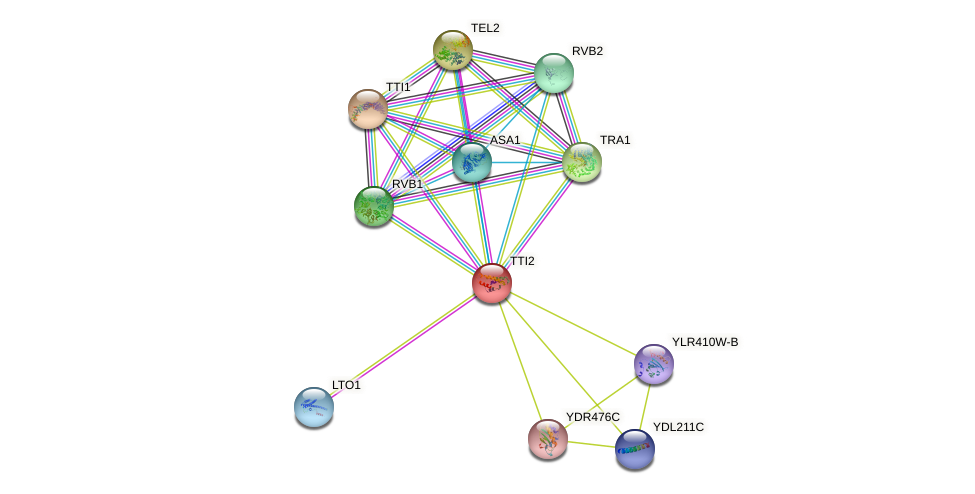 TTI2 protein (Saccharomyces cerevisiae) - STRING interaction network