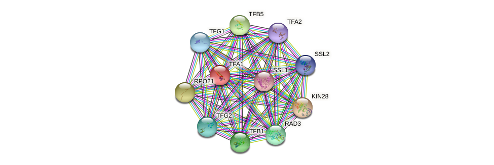 TFA1 protein (Saccharomyces cerevisiae) - STRING interaction network