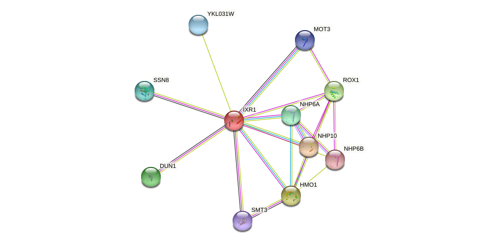IXR1 protein (Saccharomyces cerevisiae) - STRING interaction network