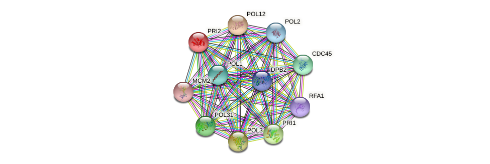 PRI2 protein (Saccharomyces cerevisiae) - STRING interaction network