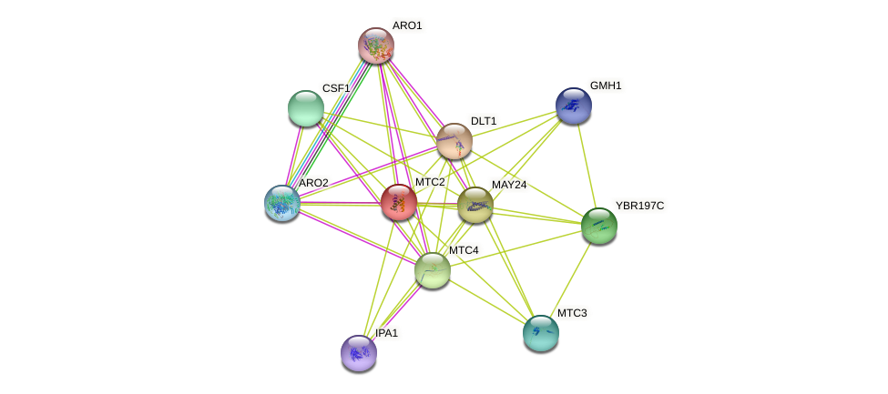 MTC2 protein (Saccharomyces cerevisiae) - STRING interaction network