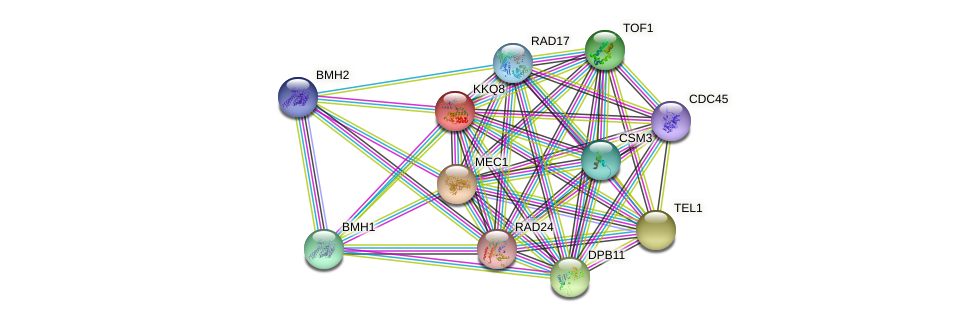 KKQ8 protein (Saccharomyces cerevisiae) - STRING interaction network
