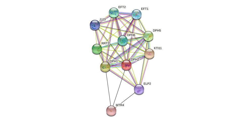 DPH2 protein (Saccharomyces cerevisiae) - STRING interaction network