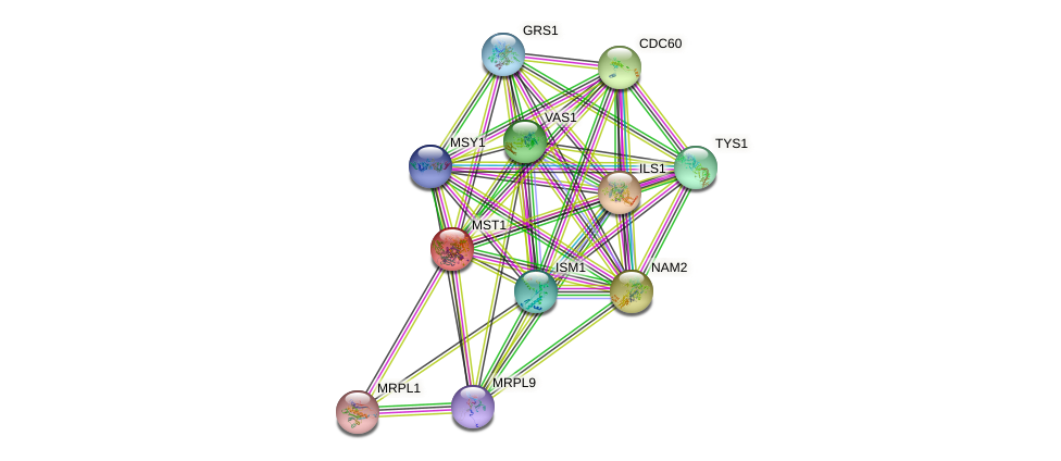MST1 protein (Saccharomyces cerevisiae) - STRING interaction network