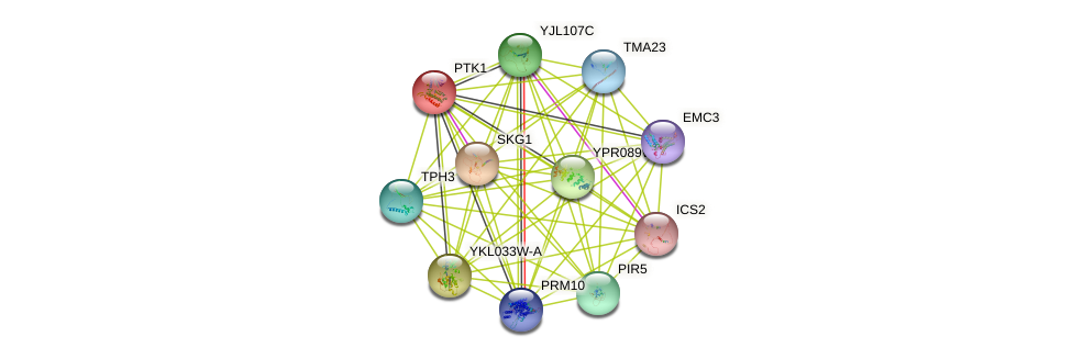 PTK1 protein (Saccharomyces cerevisiae) - STRING interaction network