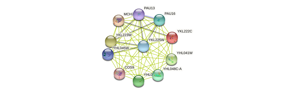 YKL222C protein (Saccharomyces cerevisiae) - STRING interaction network