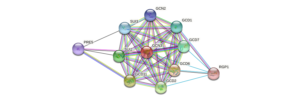 GCN3 protein (Saccharomyces cerevisiae) - STRING interaction network