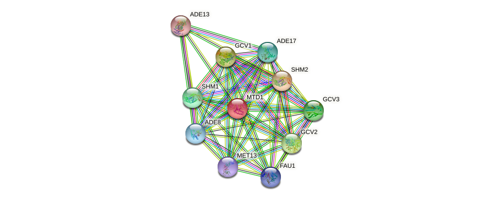 MTD1 protein (Saccharomyces cerevisiae) - STRING interaction network