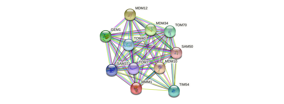 MMM1 protein (Saccharomyces cerevisiae) - STRING interaction network