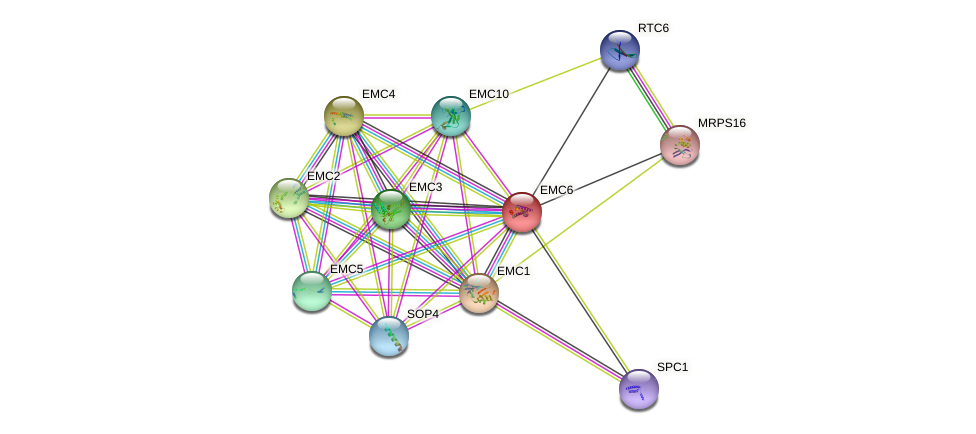 EMC6 protein (Saccharomyces cerevisiae) - STRING interaction network