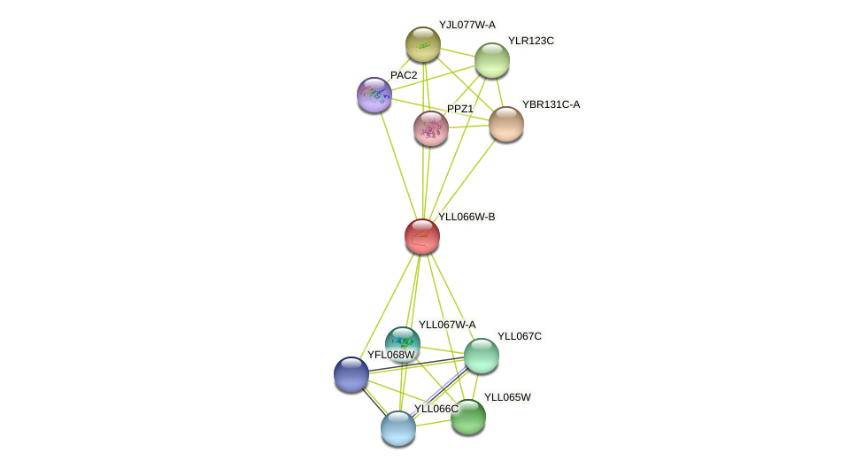 YLL066W-B protein (Saccharomyces cerevisiae) - STRING interaction network