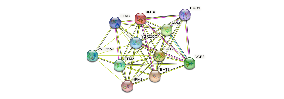 BMT6 protein (Saccharomyces cerevisiae) - STRING interaction network
