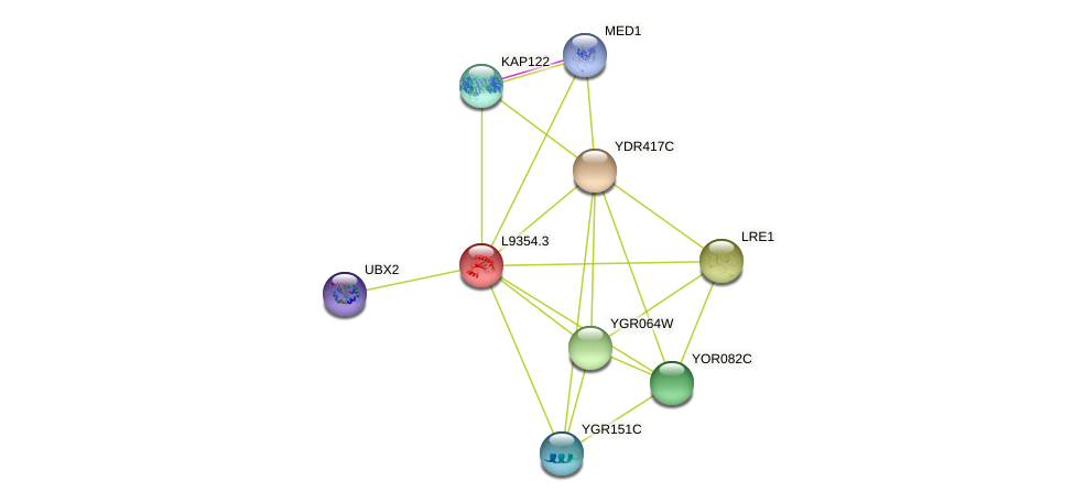 L9354.3 protein (Saccharomyces cerevisiae) - STRING interaction network