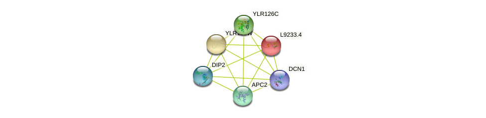 L9233.4 protein (Saccharomyces cerevisiae) - STRING interaction network