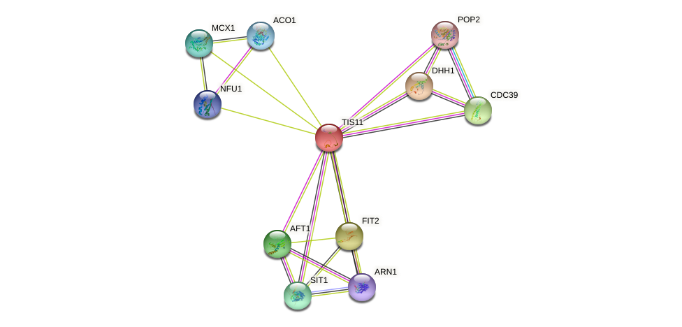TIS11 protein (Saccharomyces cerevisiae) - STRING interaction network