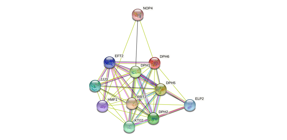 DPH6 protein (Saccharomyces cerevisiae) - STRING interaction network