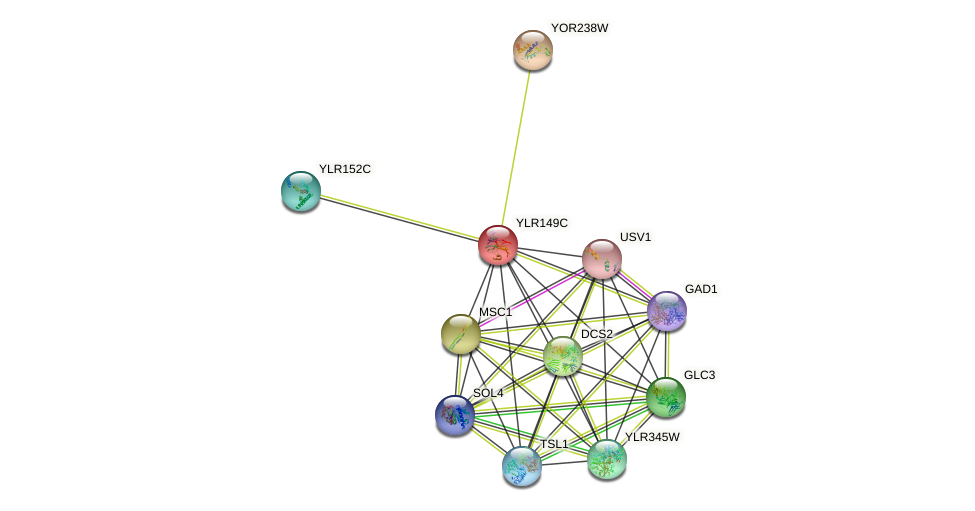 YLR149C protein (Saccharomyces cerevisiae) - STRING interaction network