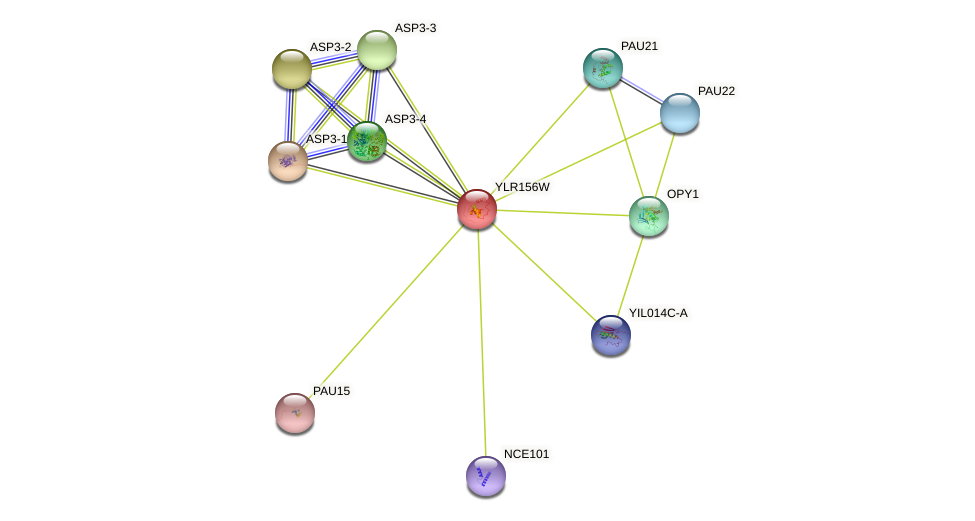 YLR156W protein (Saccharomyces cerevisiae) - STRING interaction network