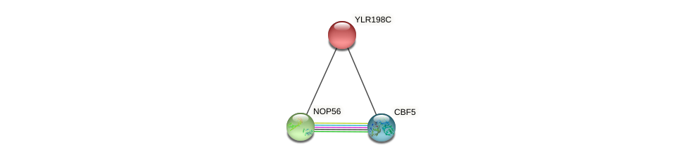 YLR198C protein (Saccharomyces cerevisiae) - STRING interaction network