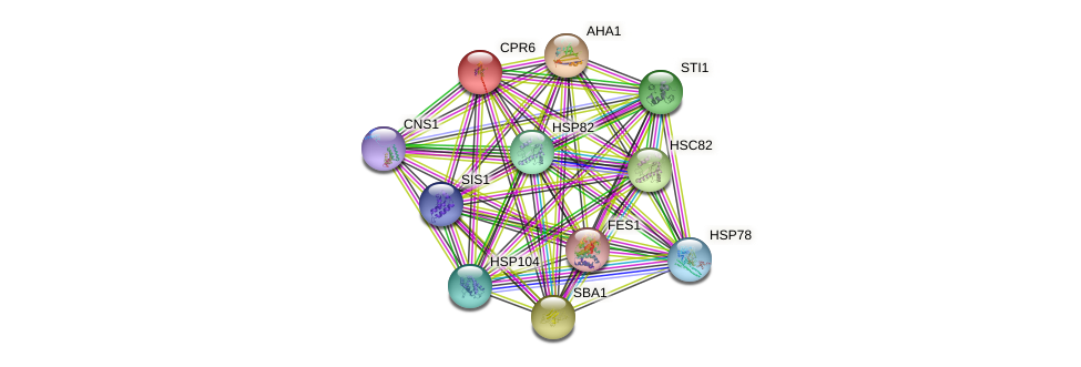 CPR6 protein (Saccharomyces cerevisiae) - STRING interaction network