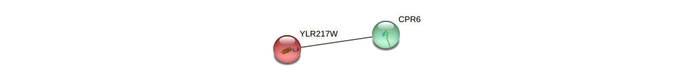 YLR217W protein (Saccharomyces cerevisiae) - STRING interaction network