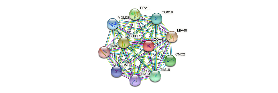 COA4 protein (Saccharomyces cerevisiae) - STRING interaction network