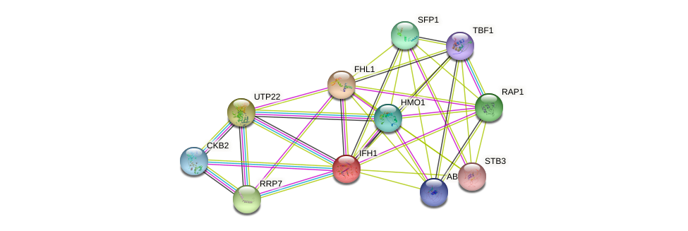 IFH1 protein (Saccharomyces cerevisiae) - STRING interaction network