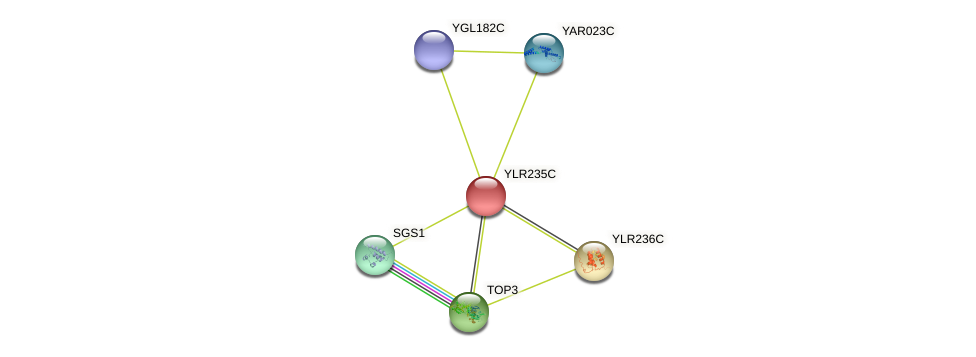 YLR235C protein (Saccharomyces cerevisiae) - STRING interaction network