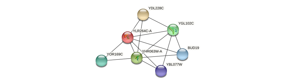 YLR264C-A protein (Saccharomyces cerevisiae) - STRING interaction network