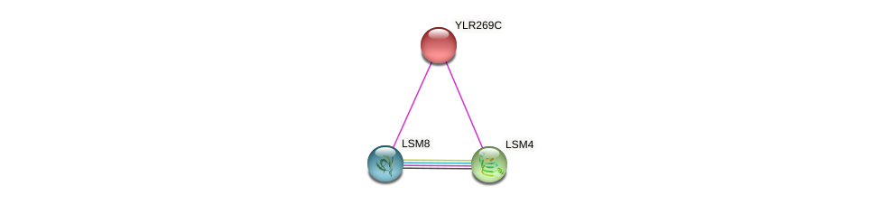 YLR269C protein (Saccharomyces cerevisiae) - STRING interaction network