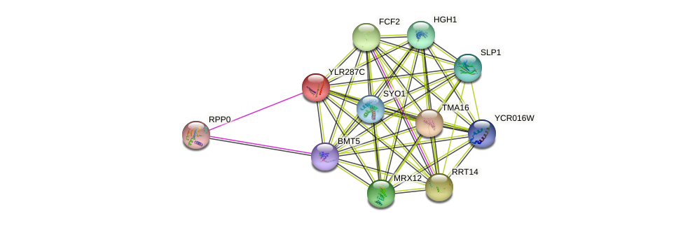 YLR287C protein (Saccharomyces cerevisiae) - STRING interaction network