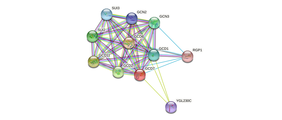 GCD7 protein (Saccharomyces cerevisiae) - STRING interaction network