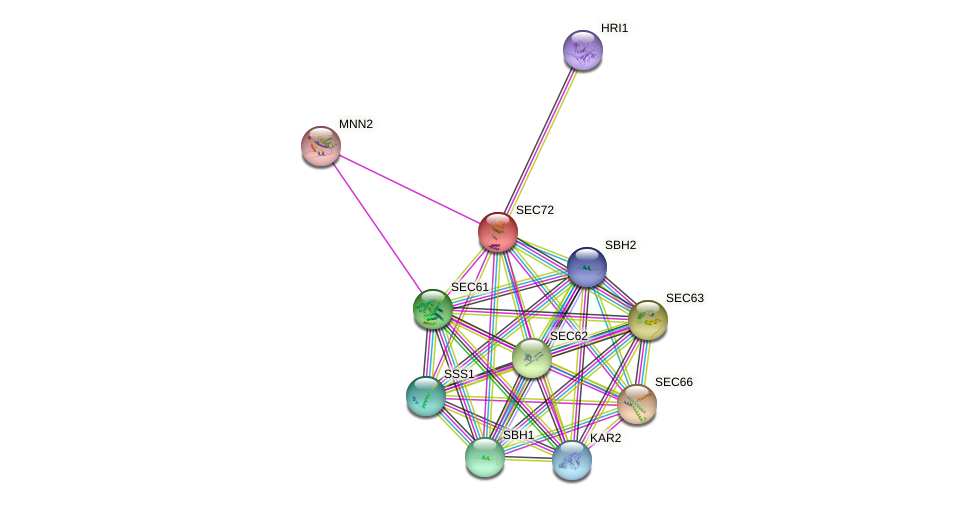 SEC72 protein (Saccharomyces cerevisiae) - STRING interaction network