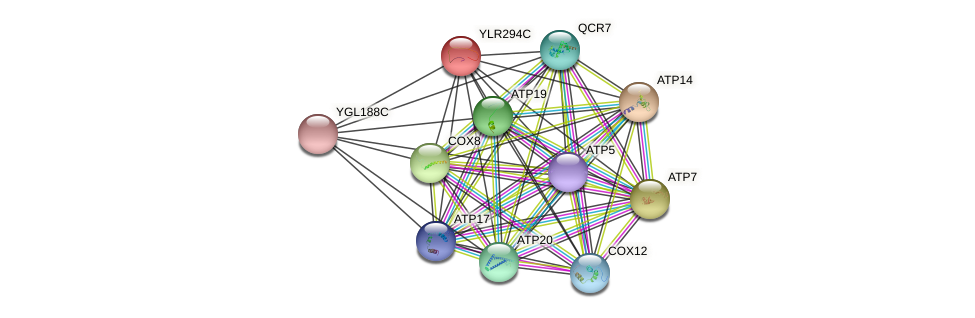 YLR294C protein (Saccharomyces cerevisiae) - STRING interaction network