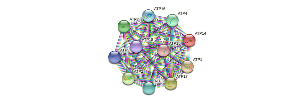 ATP14 protein (Saccharomyces cerevisiae) - STRING interaction network