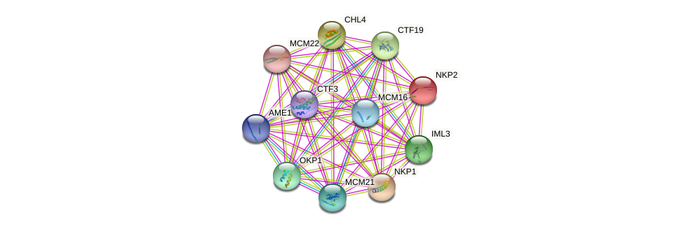 NKP2 protein (Saccharomyces cerevisiae) - STRING interaction network