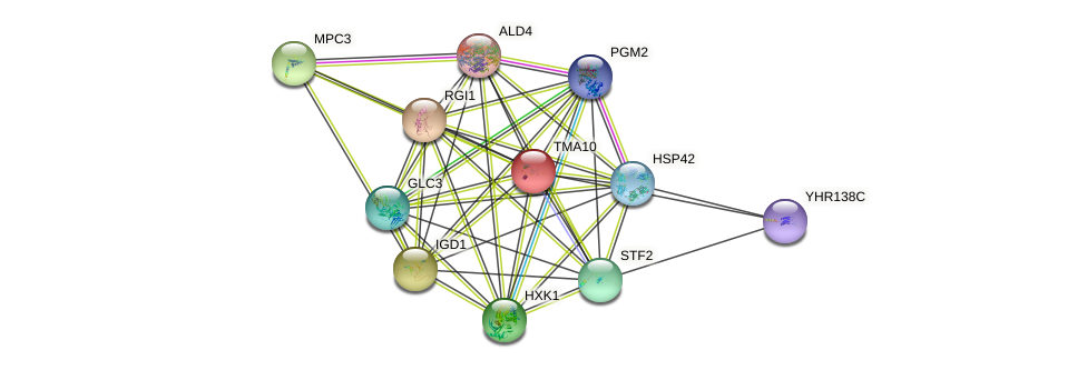 TMA10 protein (Saccharomyces cerevisiae) - STRING interaction network