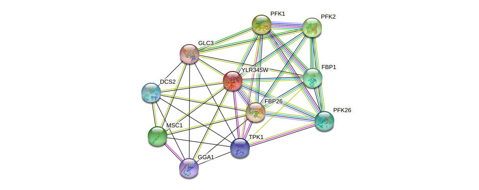 YLR345W protein (Saccharomyces cerevisiae) - STRING interaction network